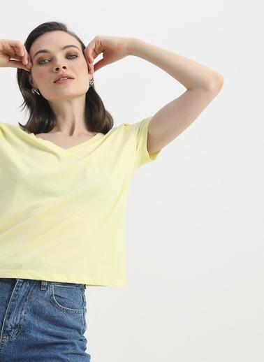 Quzu Tişört Sarı